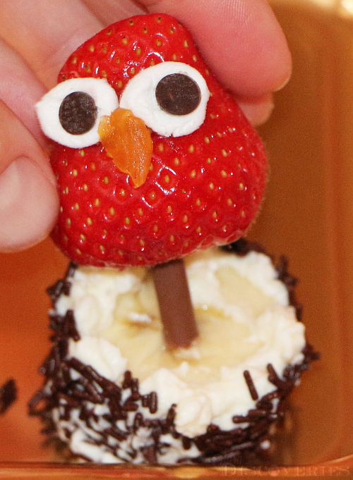 owl-snack-from-strawberries-3