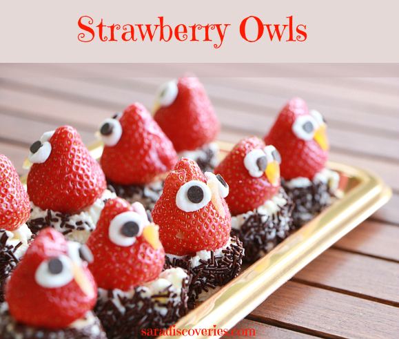 Strawberry owls
