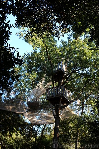 camp-trappeur-park-16