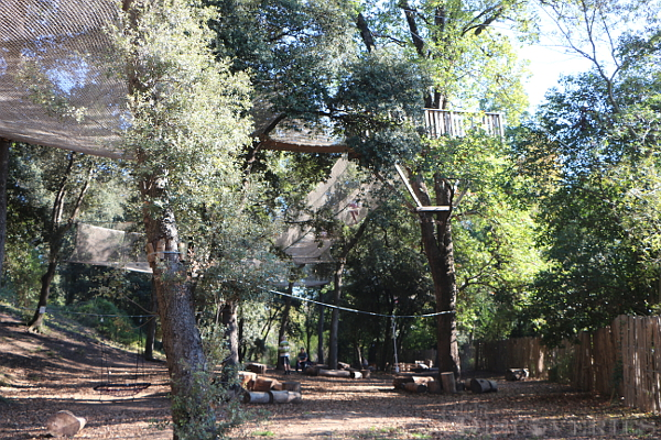camp-trappeur-park-5